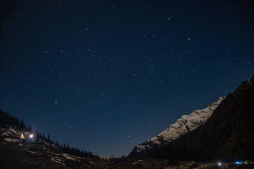 Foto profissional grátis de anis-estrelado, árvores altas, astrofotografia, astronomia