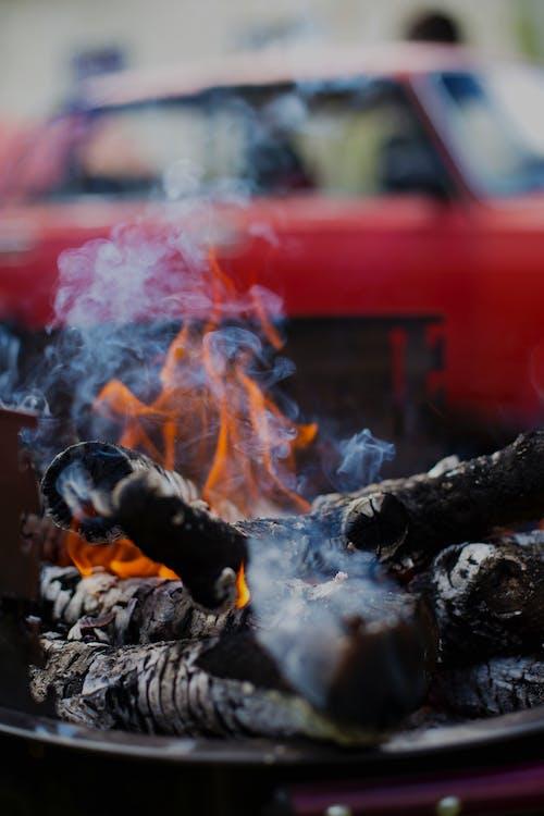 Imagine de stoc gratuită din foc, friptură, fum