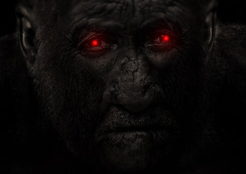 Free stock photo of Bigfoot red eye shine