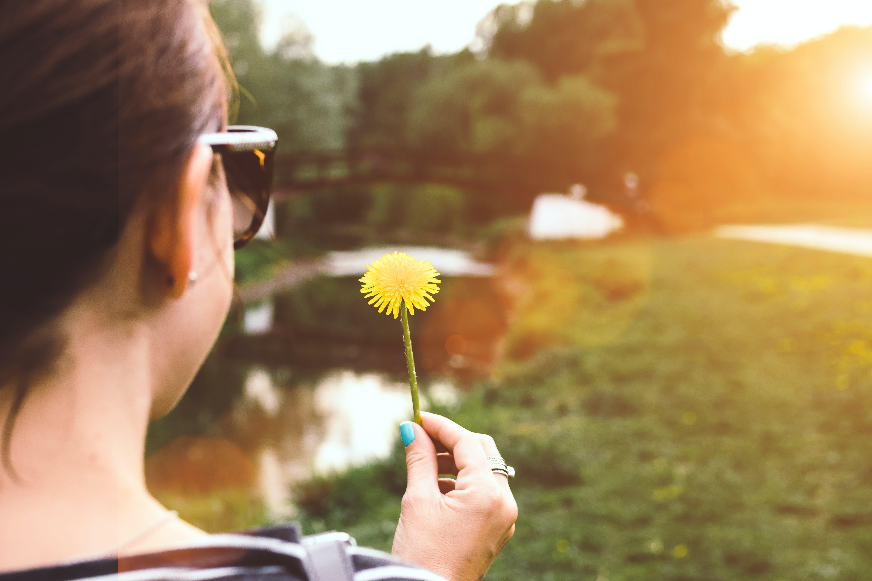 1, 공원, 귀여운, 기쁨의 무료 스톡 사진
