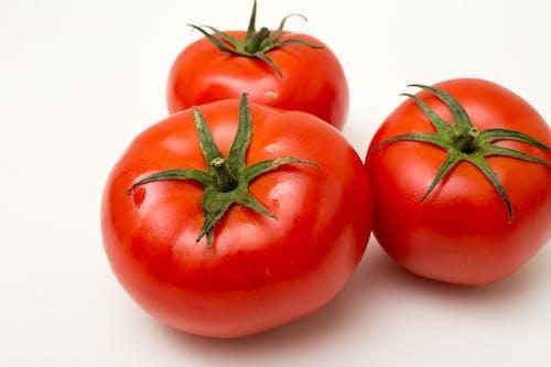 Fotobanka sbezplatnými fotkami na tému červená, paradajka