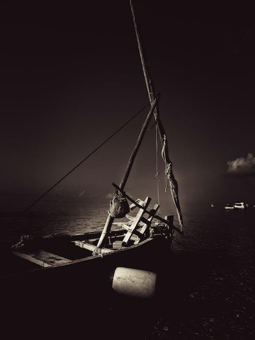 肯尼亞北海岸, 黑與白 的 免費圖庫相片