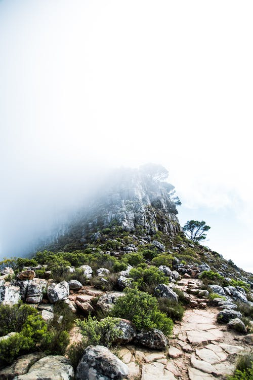 Fotos de stock gratuitas de Ciudad del Cabo, con niebla, montaña