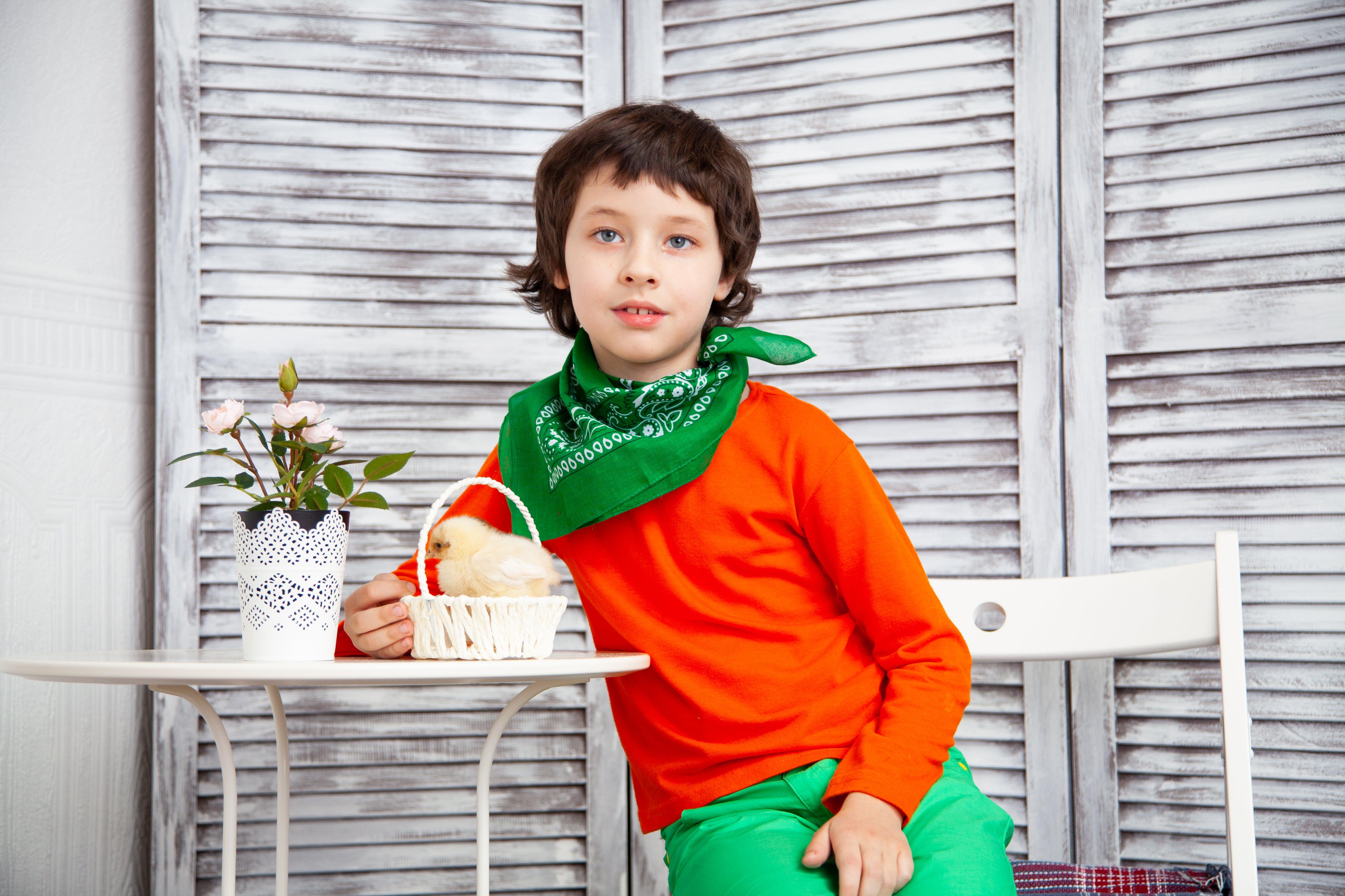 Kostenloses Stock Foto zu informell, jung, junge, kind