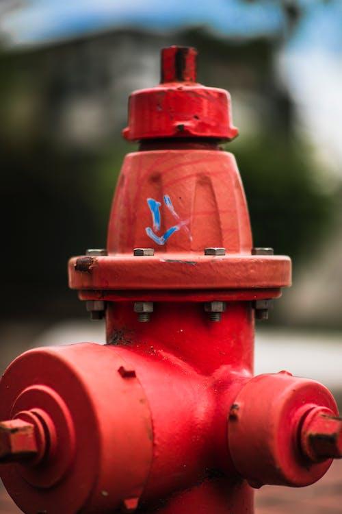 Ingyenes stockfotó boke, hidratáló, tűzoltó, víz témában