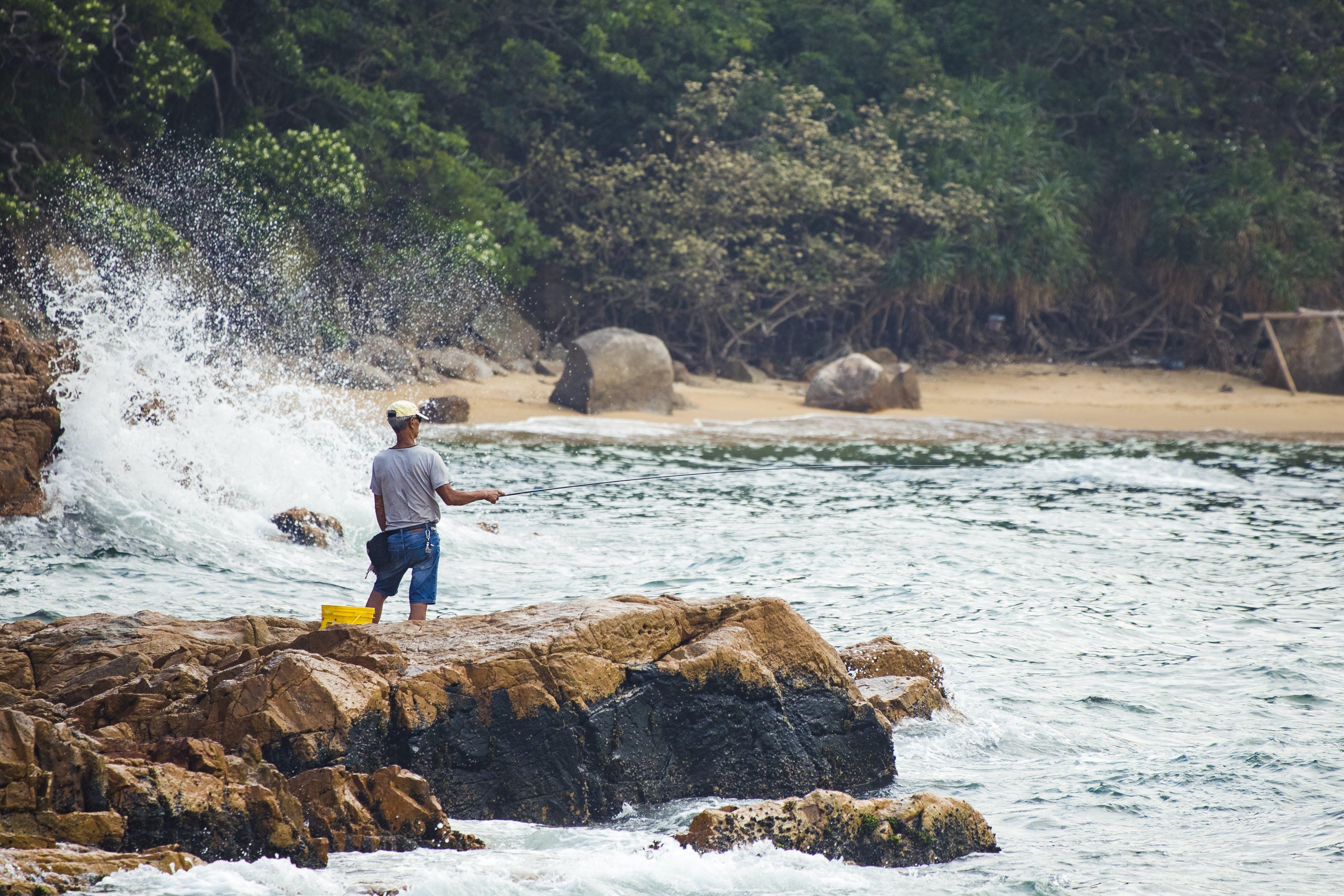 남자, 바다, 바위, 사람의 무료 스톡 사진