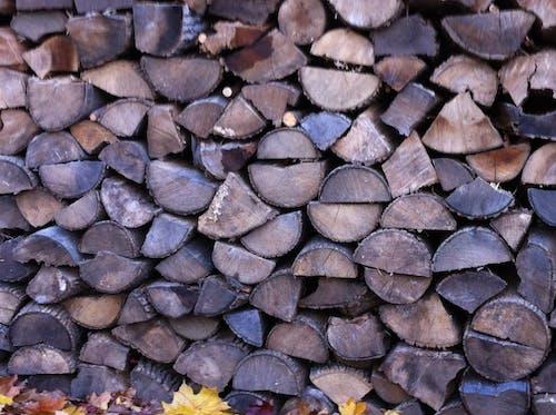 Photos gratuites de pile de bois