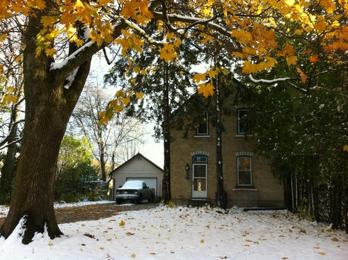 Free stock photo of fall, house, leaves, snow