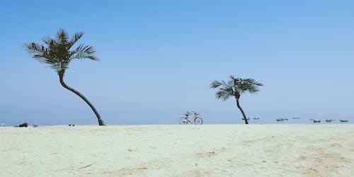 Fotos de stock gratuitas de costa, día soleado, playa de arena
