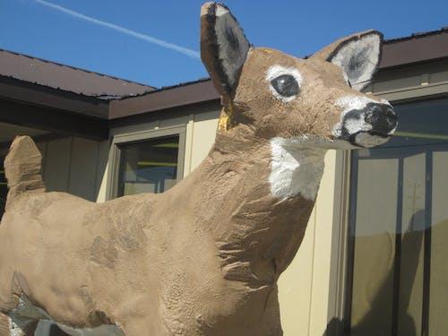 Free stock photo of deer, sculpture, statue