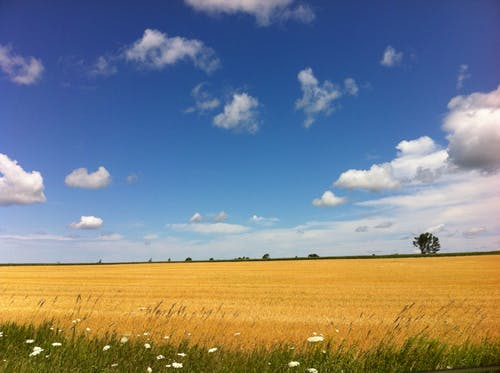 Free stock photo of clouds, country, field