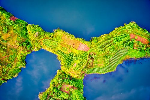 Aerial Photo of Green Vegetation Covered Island