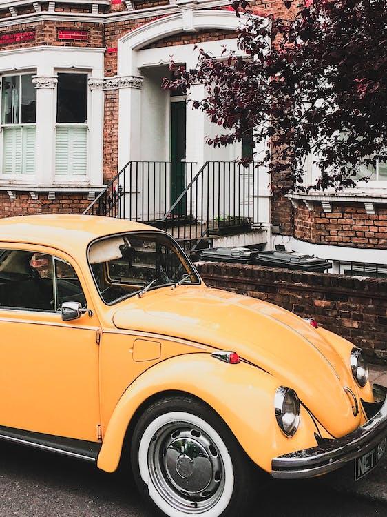 amarelo, automóvel, beetle vw