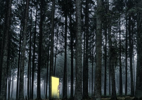 Free stock photo of alien, dissapearances, interdimensional, missing 911