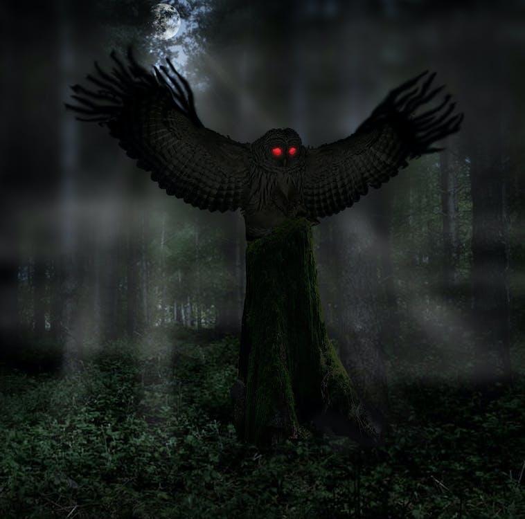 mothman, owl man, ufo