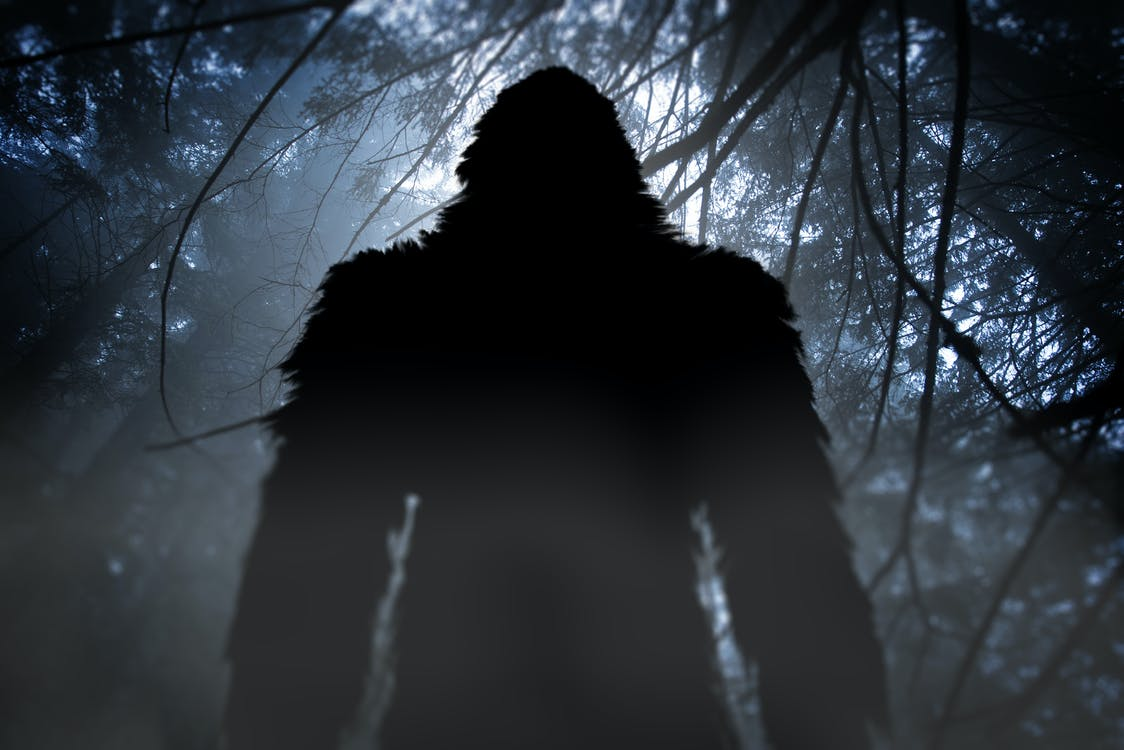 bigfoot, Sasquatch silhouette