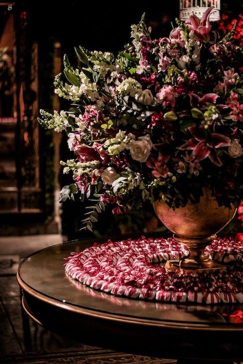 Ảnh lưu trữ miễn phí về cắm hoa, hệ thực vật, hoa, trang trí
