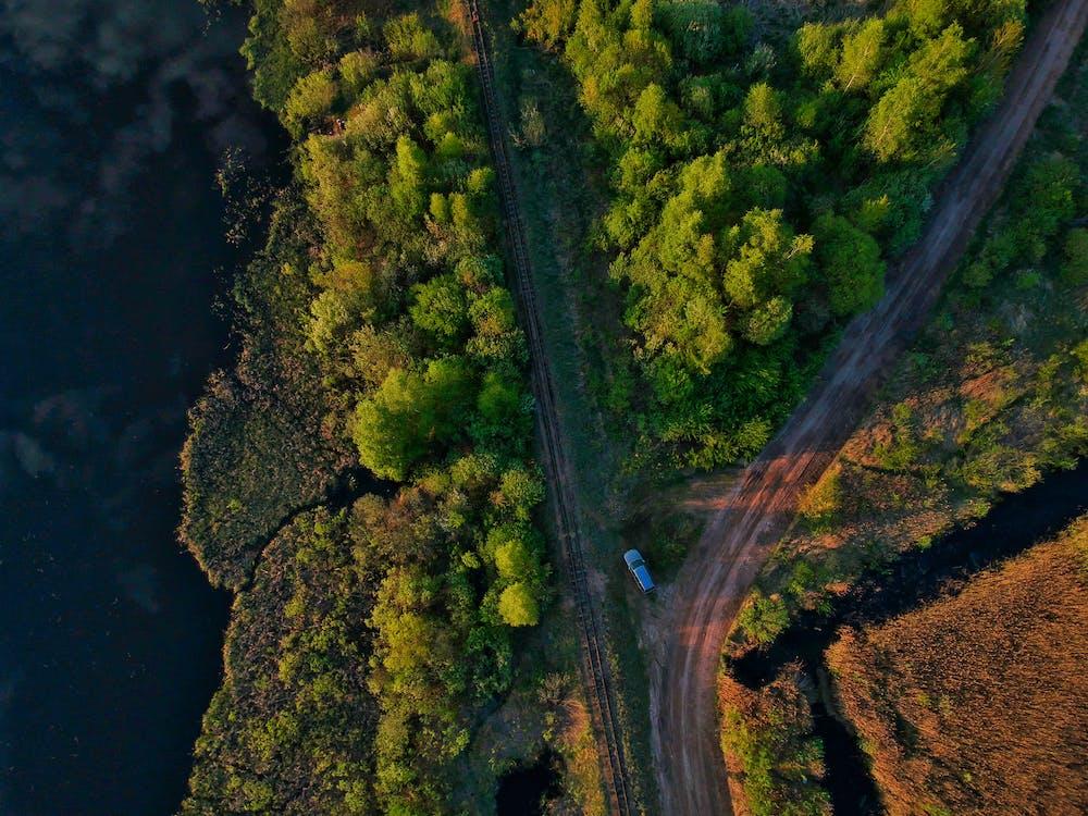 autó, drónfelvétel, erdő