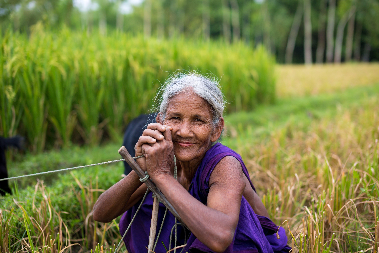 Δωρεάν στοκ φωτογραφιών με bangladesh, lifestyle, αγρόκτημα, αγρότης