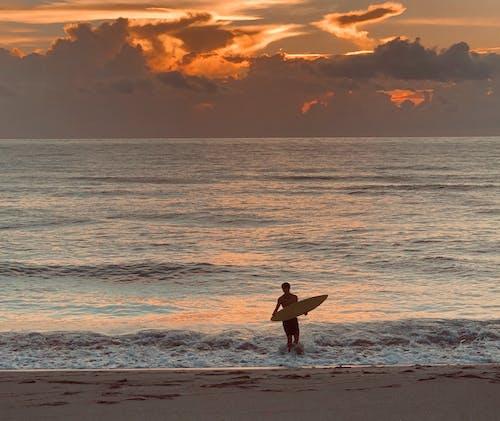 日出, 海灘, 衝浪 的 免费素材照片