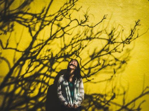 가벼운, 가을, 감은 눈, 그림자의 무료 스톡 사진