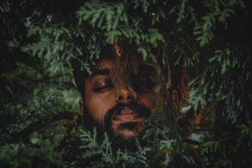 Free stock photo of beard, benoy, dark green plants, fashion model
