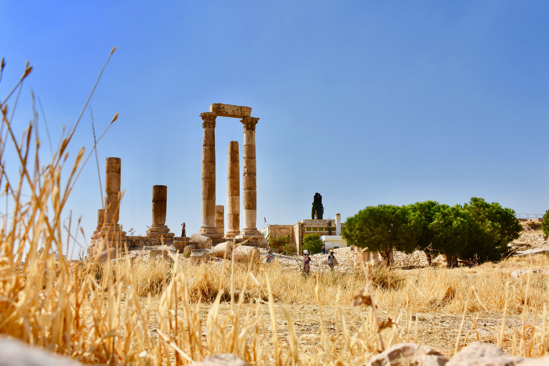 Gratis lagerfoto af amman citadel, antik, arkitektur, arkæologi