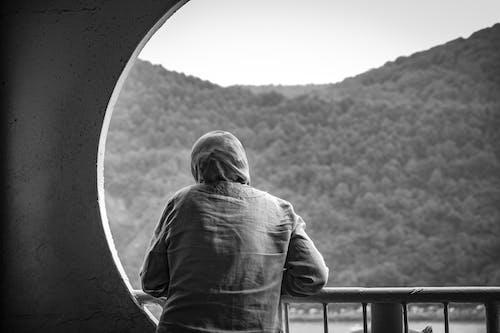 Безкоштовне стокове фото на тему «вікно, дерева, дорослий, краєвид»