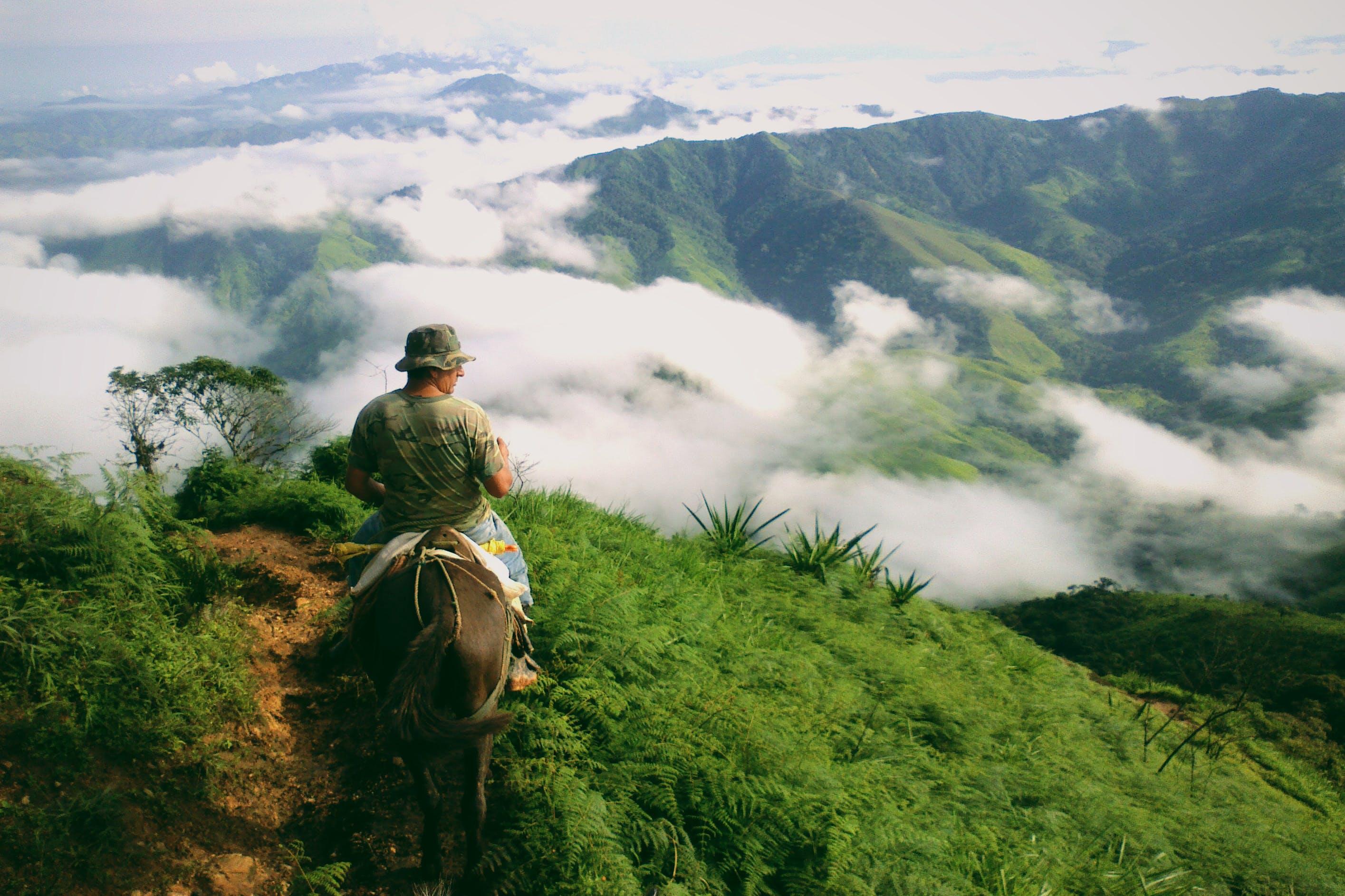 Δωρεάν στοκ φωτογραφιών με άλογο, αναψυχή, άνθρωπος, βουνό