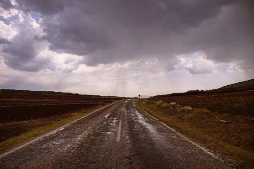 Foto d'estoc gratuïta de a l'aire lliure, camp, capvespre, carretera