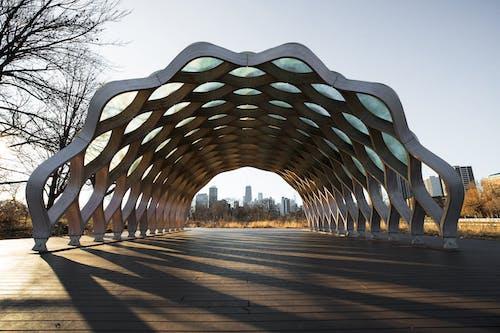 Photos gratuites de arbres, architecture, architecture moderne, Bâtiment moderne