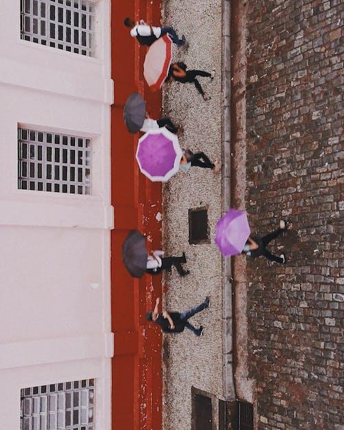 umbtrllas, 人, 俯視圖, 城市 的 免費圖庫相片
