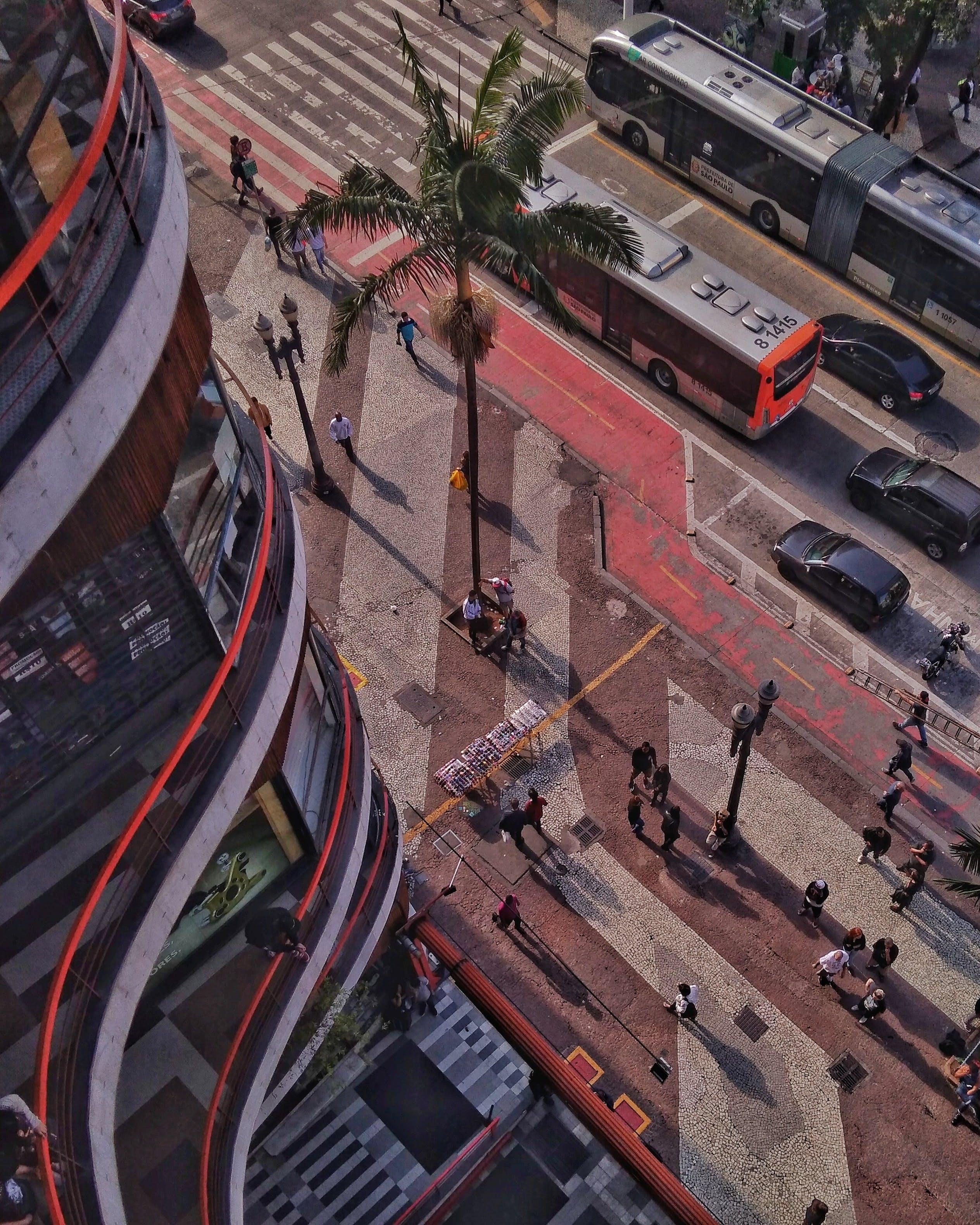 Gratis lagerfoto af folk, fra oven, fugleperspektiv, gade