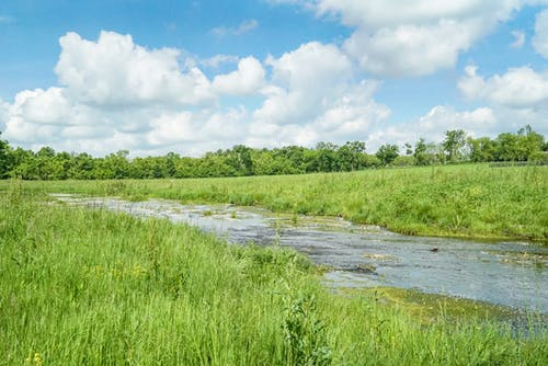 Бесплатное стоковое фото с весна, голубые небеса, красивый пейзаж