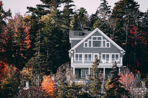 건물, 건축, 건축 설계, 나무의 무료 스톡 사진