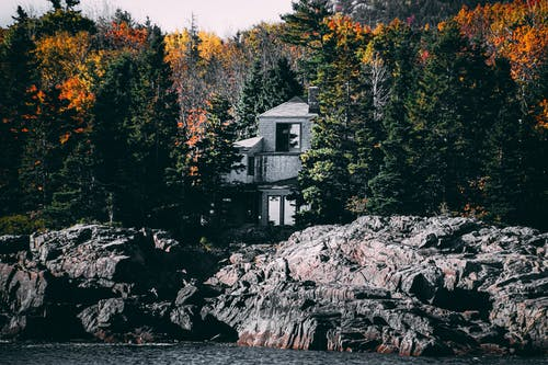 Photos gratuites de arbres, architecture, bâtiment, canada
