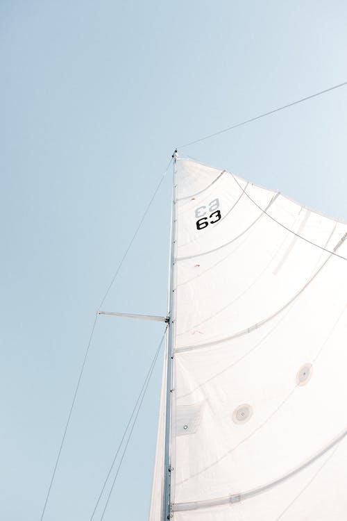 båt, fartøy, genoa