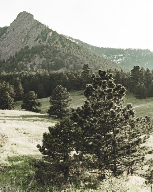 Δωρεάν στοκ φωτογραφιών με βουνό, γραφικός, τοπίο, φύση