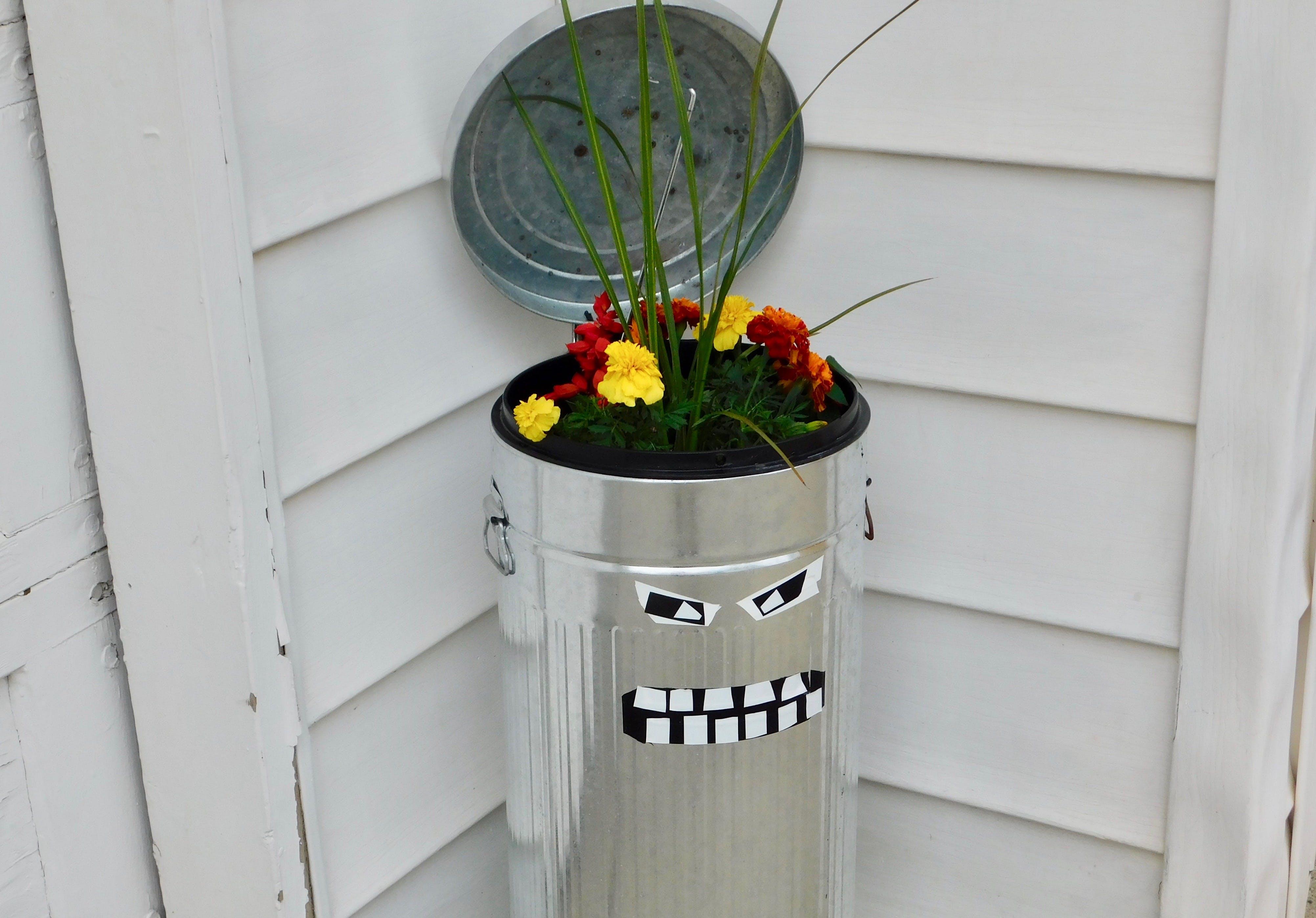 Fotos de stock gratuitas de hace una gran cama de flores, un viejo bote de basura