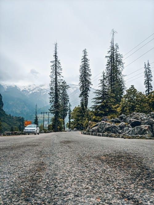 Fotos de stock gratuitas de carretera, perspectiva, viajar