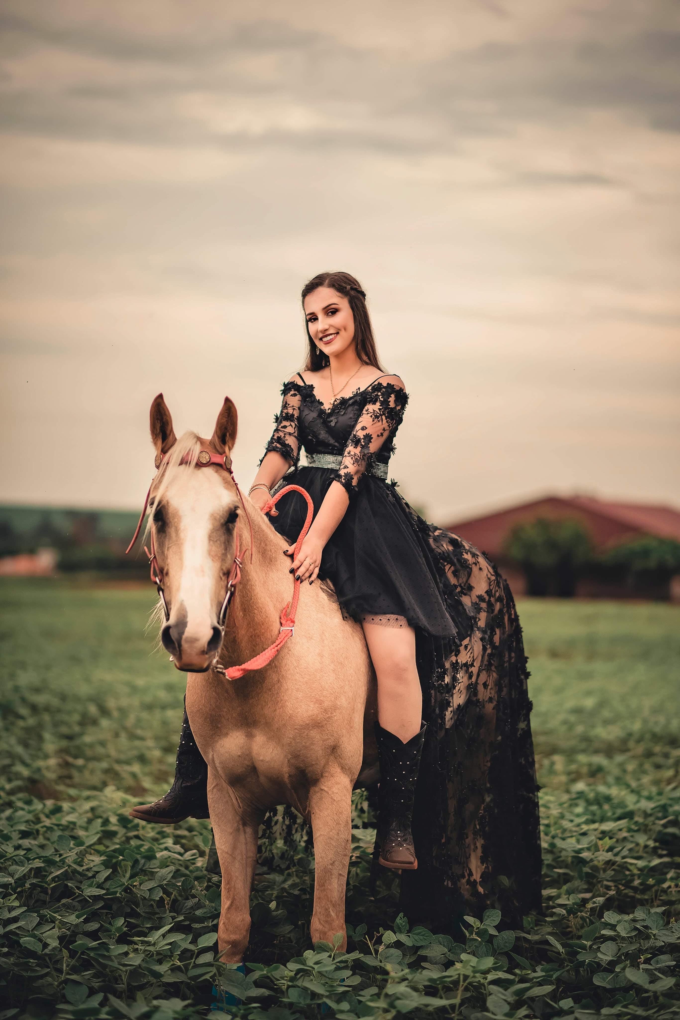 Základová fotografie zdarma na téma farma, hospodářská zvířata, hřiště, kavalerie