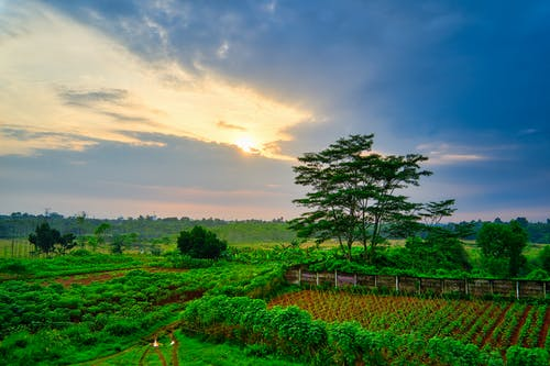 Základová fotografie zdarma na téma cestování, denní světlo, farma, fotka zvysokého úhlu