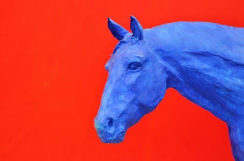 Základová fotografie zdarma na téma červená, hlava, kůň, model