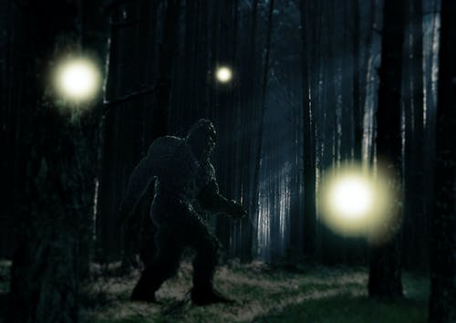 Free stock photo of alien, balls of light, bigfoot, bol