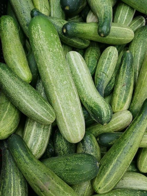 Immagine gratuita di cetriolo, cibo, salutare, verde