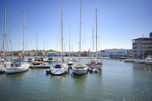 Free stock photo of boat, city, city life, citylife