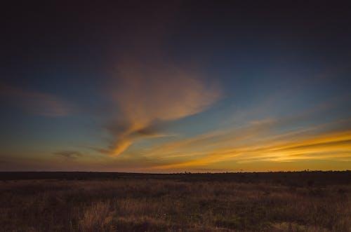 คลังภาพถ่ายฟรี ของ cerrado, ตะวันลับฟ้า, ทะเลทราย, ทุ่งหญ้า