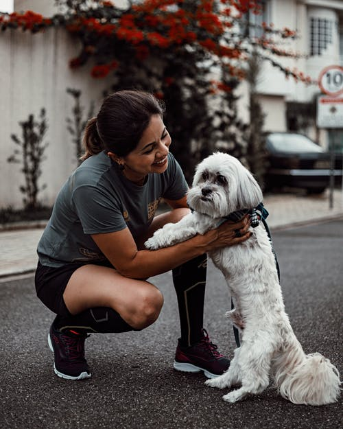 Smiling Woman Petting White Dog