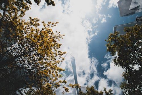 Základová fotografie zdarma na téma barvy, budovy, denní, denní světlo