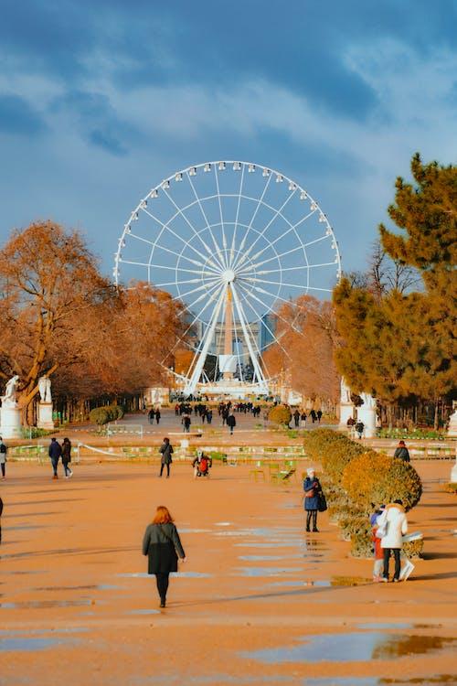 ánh sáng ban ngày, bánh xe đu quay, công viên